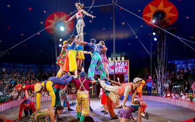 Sania Circus